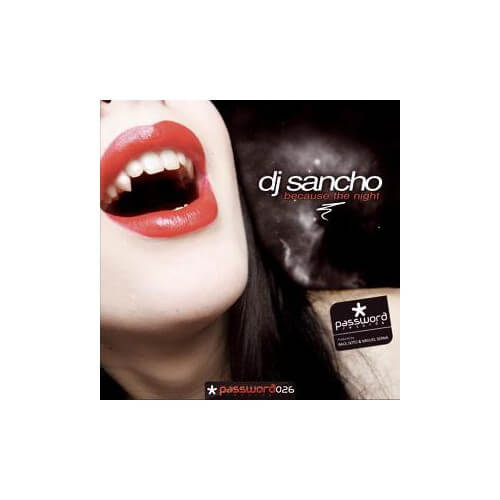 Dj Sancho - Because The Night